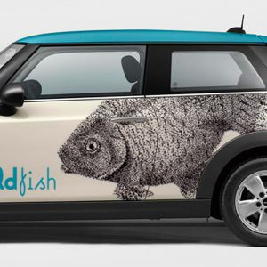 Detalle de rotulacion de coche Mini Boldfish. Rotula tus coches con la mejor empresa de rotulacion en Madrid. Prorotul rotulacion profesional para coches.