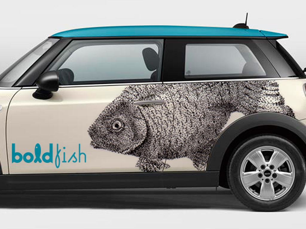 Rotulaci n de coche mini boldfish prorotul for Rotulacion de vehiculos madrid