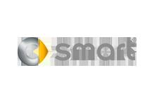 Rotulación de vehículos SMART a domicilio en Madrid